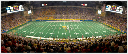 Bison Football Field